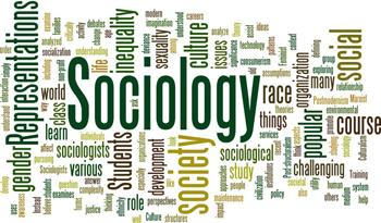SOC 2270 – ARTICLE ANALYSIS